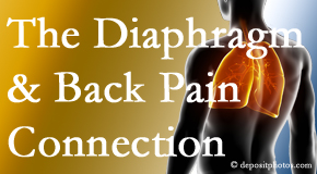Spine & Sports Rehab Center knows the relationship of the diaphragm to the body and spine and back pain.