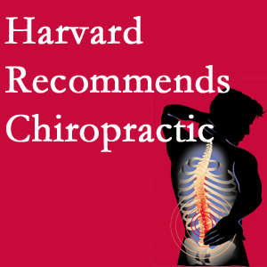 Spine & Sports Rehab Center offers chiropractic care like Harvard recommends.