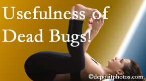Spine & Sports Rehab Center finds dead bugs quite useful in the healing process of Baton Rouge  back pain for many chiropractic patients.