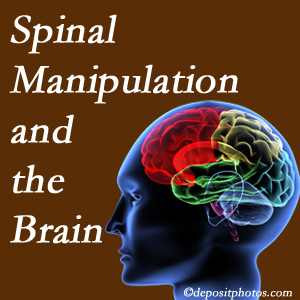 Spine & Sports Rehab Center [presents research on the benefits of spinal manipulation for brain function.